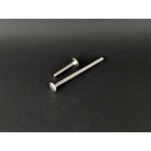 Din 603 Kapupántcsavar rozsdamentes (DIN603, M6x, 20mm, A2)